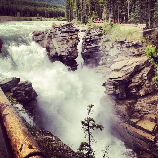 Athabasca Fall